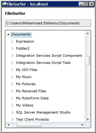 شكل 11 - تطبيق مستعرض الملفات في سيلفرلايت